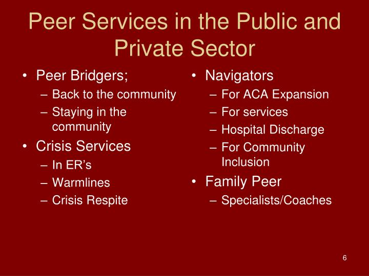 Peer Services in the Public and Private Sector