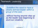 teamwork l eadership