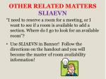 other related matters sliaevn