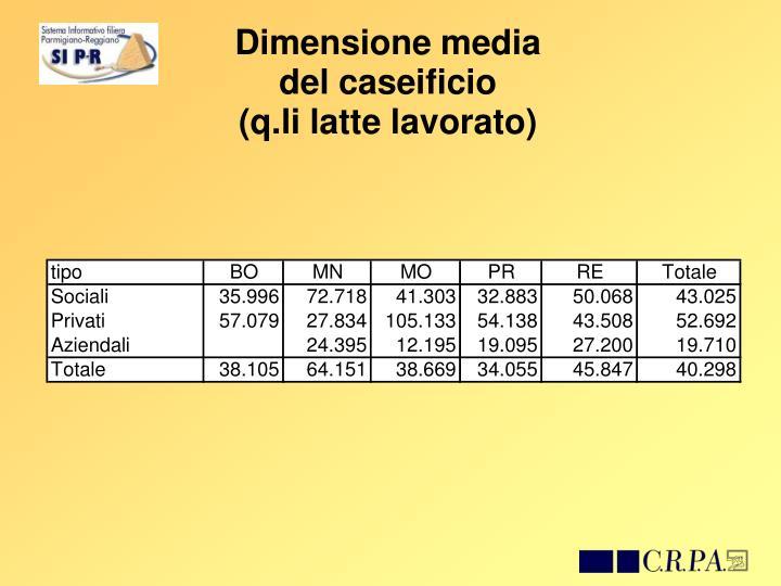 Dimensione media