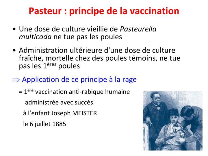 Pasteur : principe de la vaccination