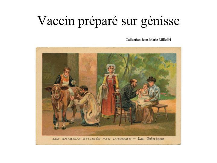 Vaccin préparé sur génisse