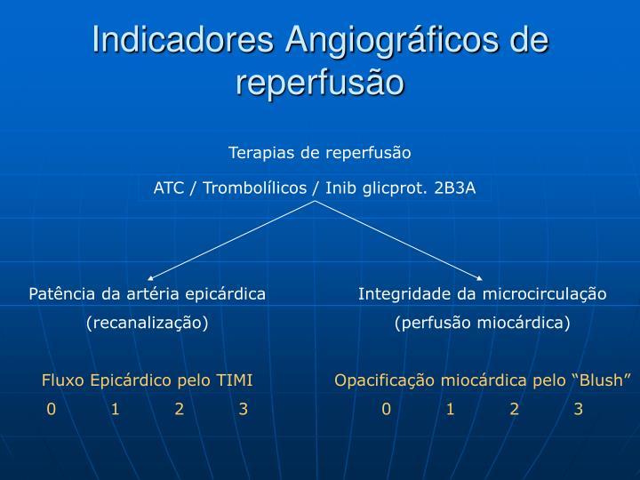 Indicadores Angiográficos de reperfusão