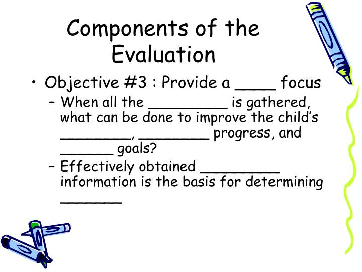 Components of the Evaluation