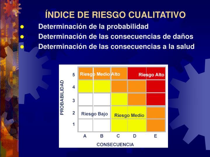 ÍNDICE DE RIESGO CUALITATIVO