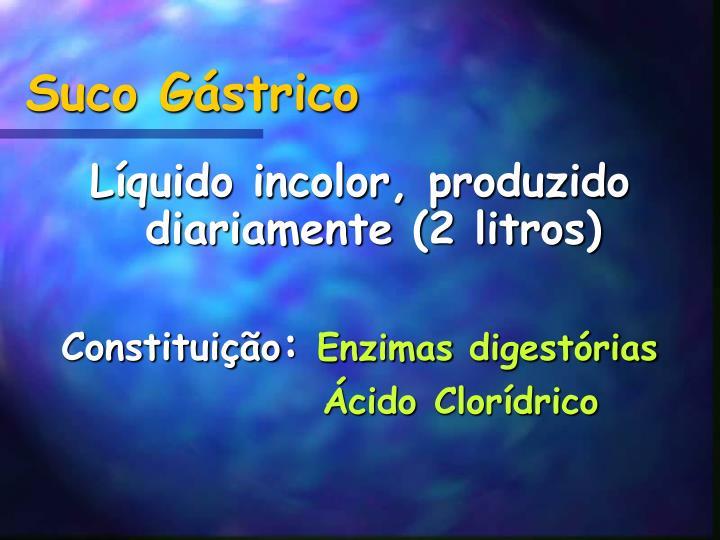 Suco Gástrico
