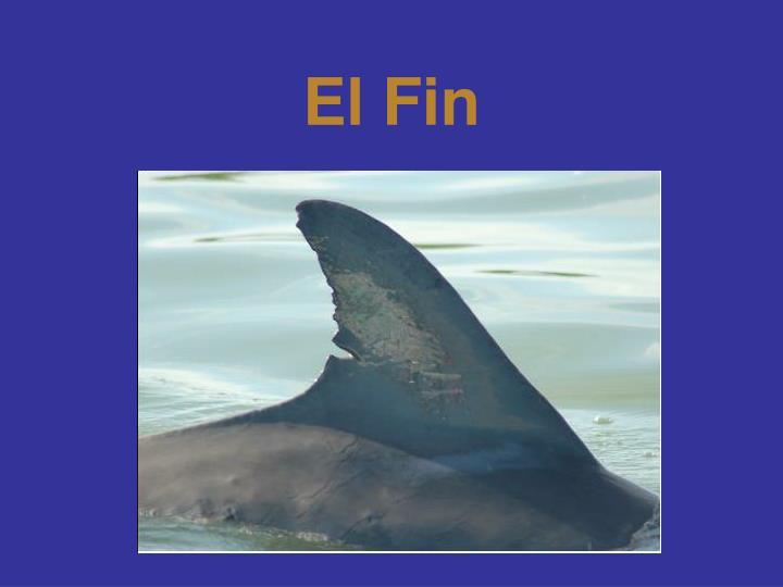 El Fin