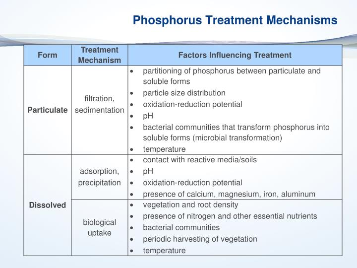 Phosphorus Treatment Mechanisms