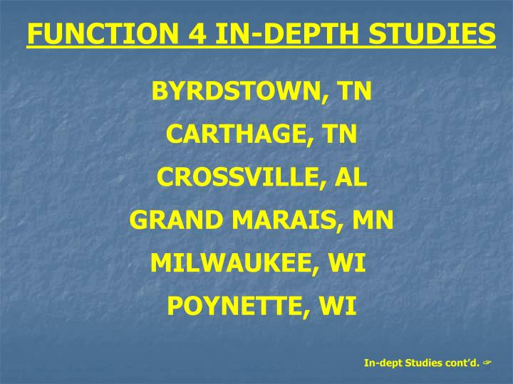 FUNCTION 4 IN-DEPTH STUDIES