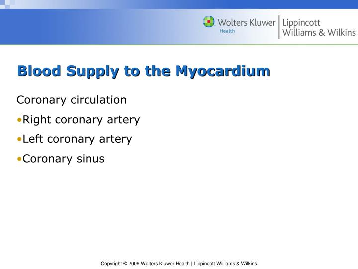 Blood Supply to the Myocardium