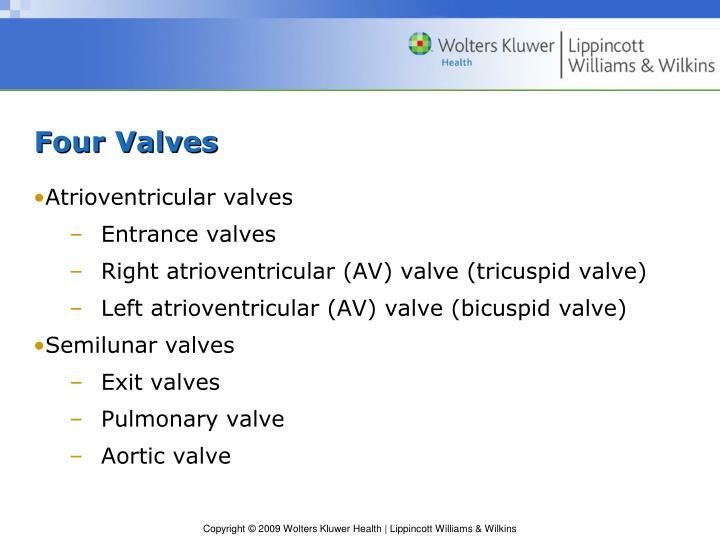Four Valves
