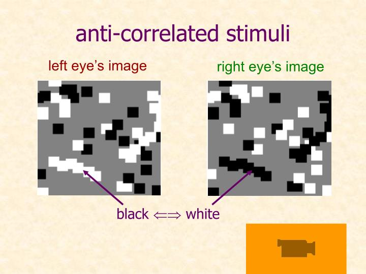 anti-correlated stimuli