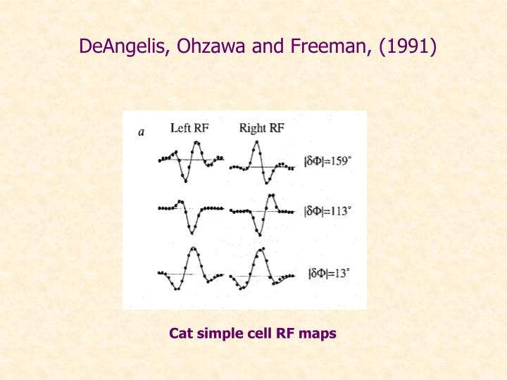 DeAngelis, Ohzawa and Freeman, (1991)