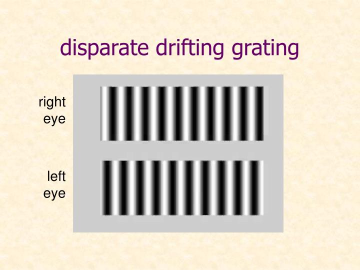 disparate drifting grating