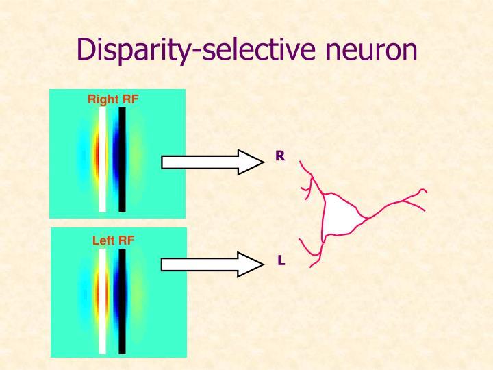 Disparity-selective neuron