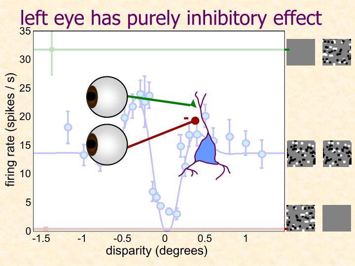 left eye has purely inhibitory effect
