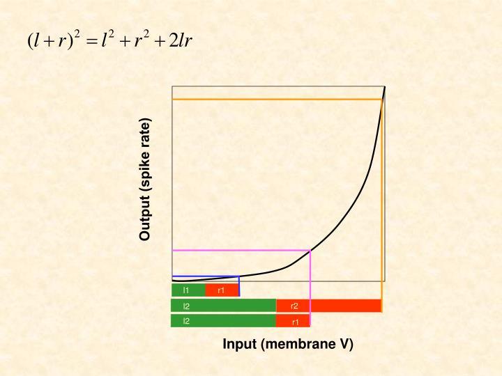 Output (spike rate)