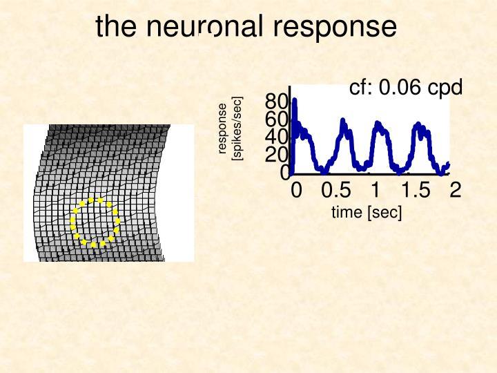 the neuronal response