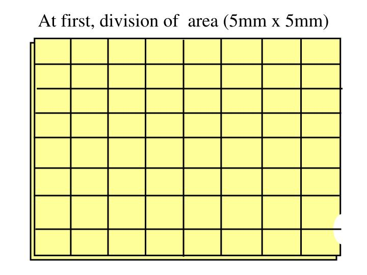 At first, division of  area (5mm x 5mm)