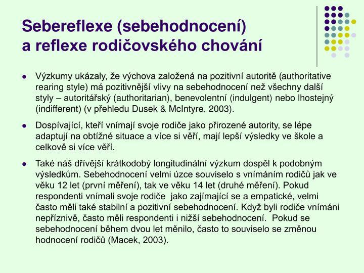 Sebereflexe (sebehodnocení)