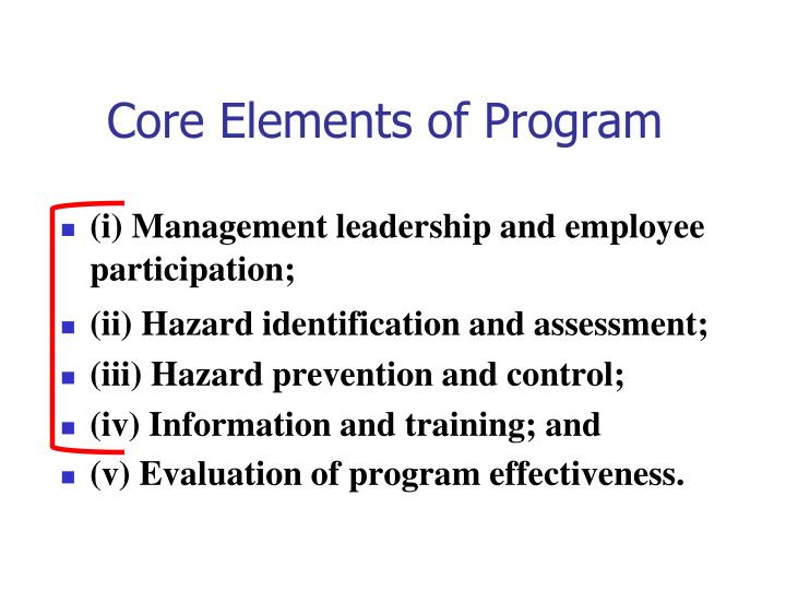 Core Elements of Program