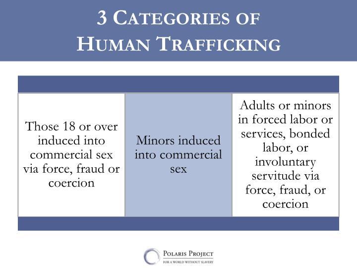 3 Categories of
