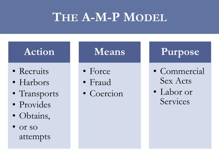 The A-M-P Model