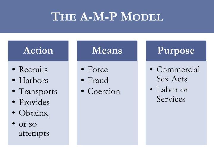 The A-M-P Model