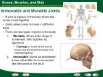 immovable and movable joints