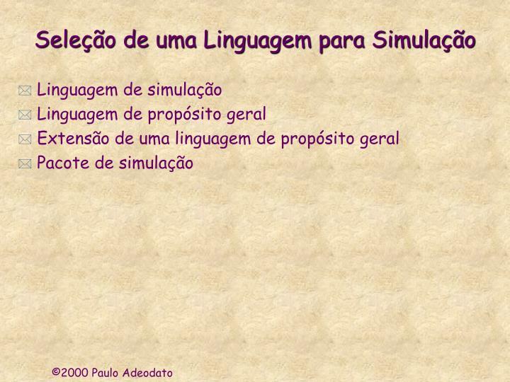 Seleção de uma Linguagem para Simulação