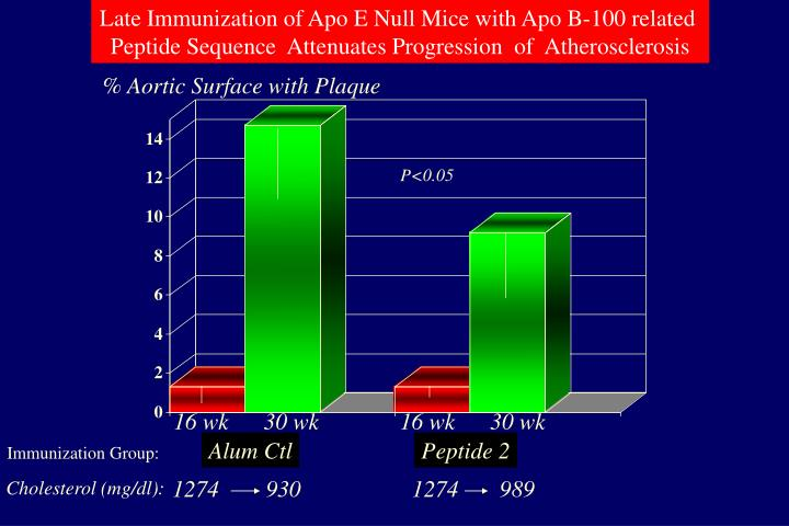 Late Immunization of Apo E Null Mice with Apo B-100 related
