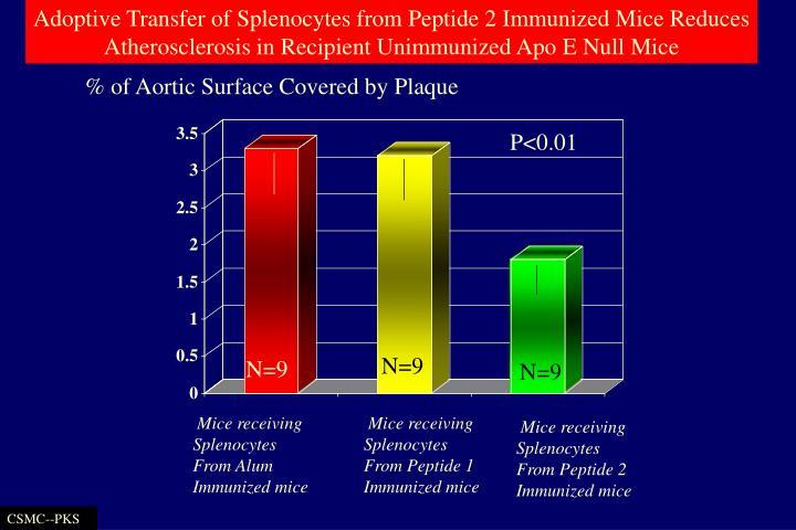 Adoptive Transfer of Splenocytes from Peptide 2 Immunized Mice Reduces