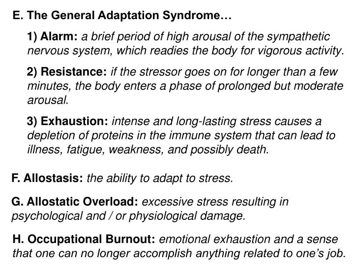 E. The General Adaptation Syndrome…