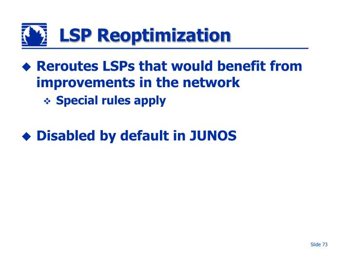 LSP Reoptimization
