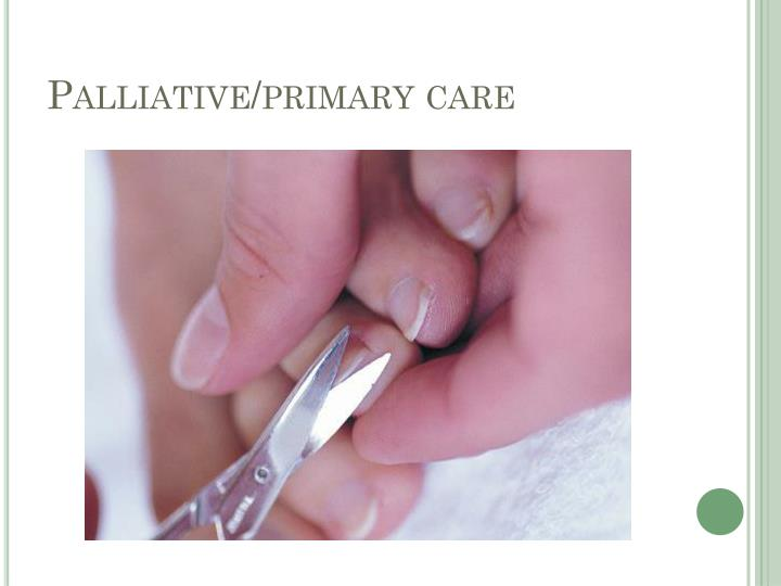 Palliative/primary care