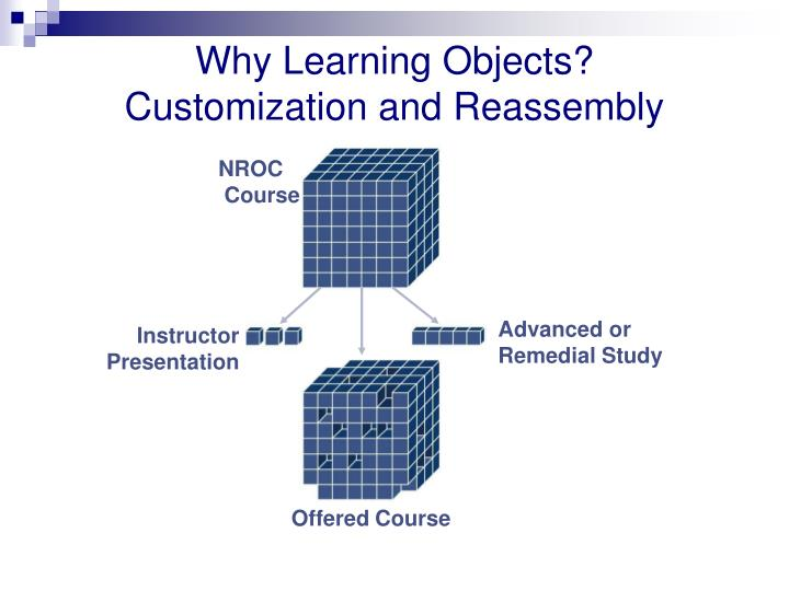 Why learning objects customization and reassembly