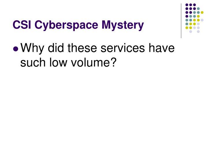 CSI Cyberspace Mystery