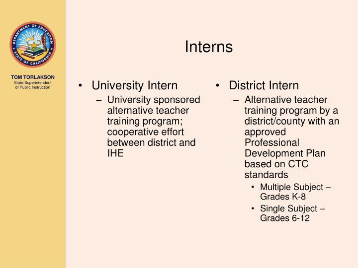 University Intern