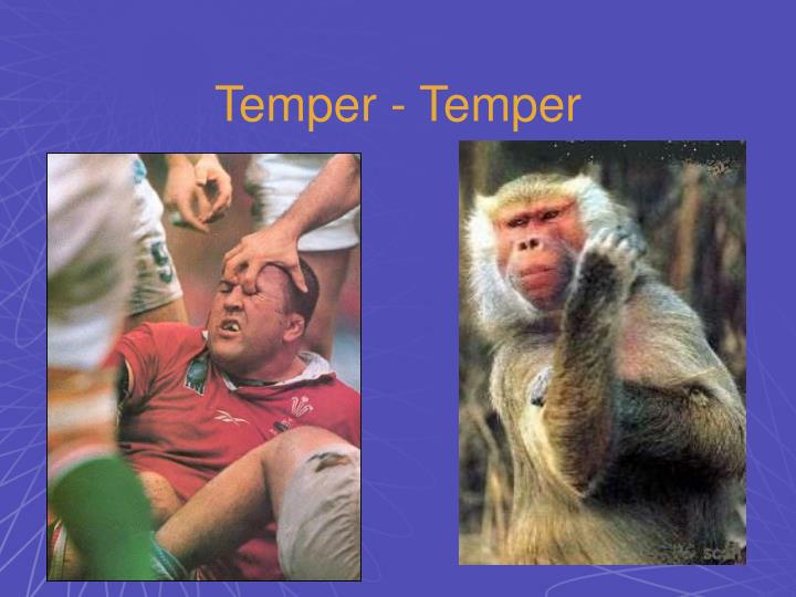 Temper - Temper