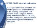 au nepad cdsf operationalization