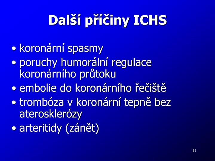 Další příčiny ICHS