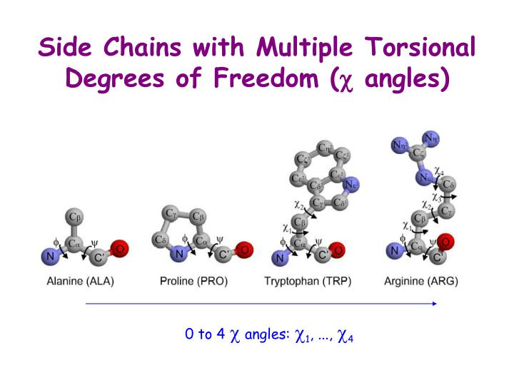 Side Chains with Multiple Torsional Degrees of Freedom (