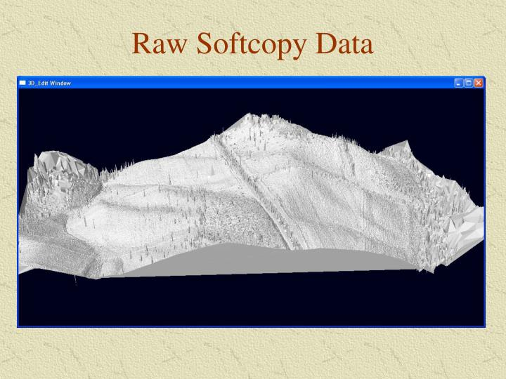 Raw Softcopy Data