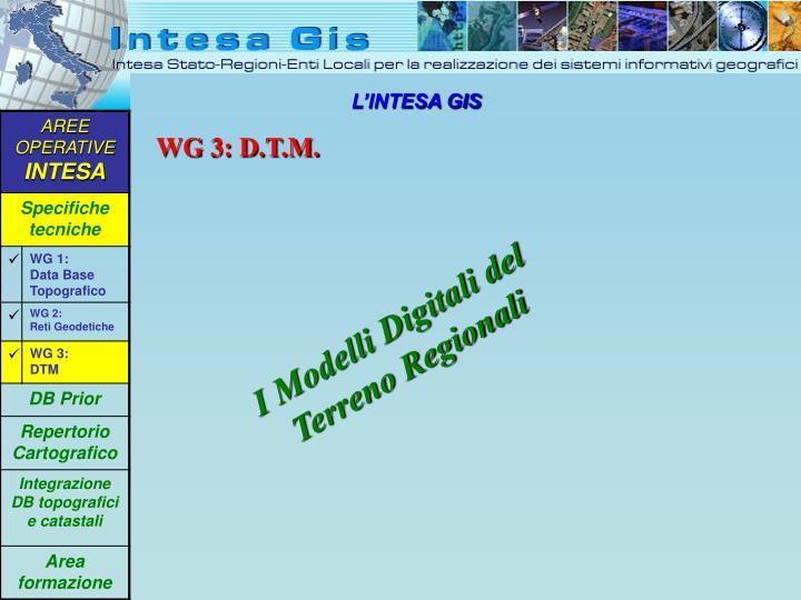 WG 3: D.T.M.