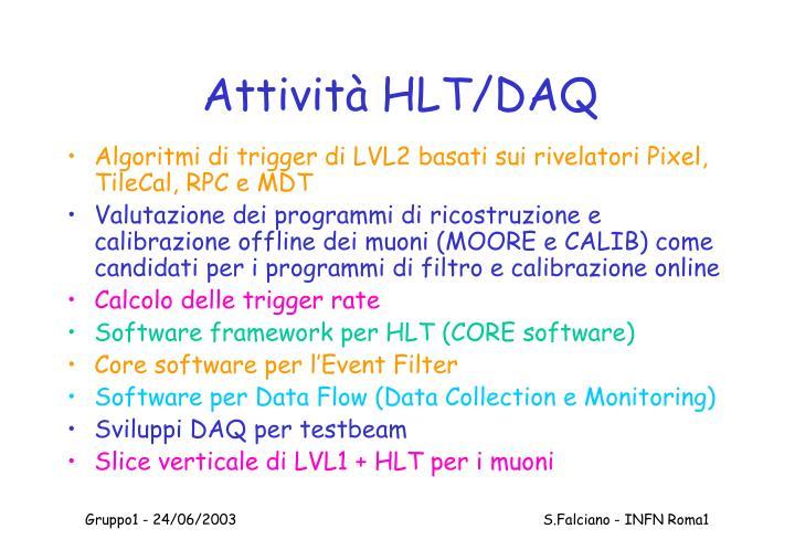 Attività HLT/DAQ
