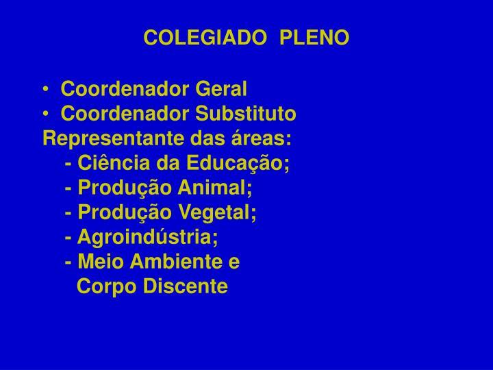 COLEGIADO  PLENO