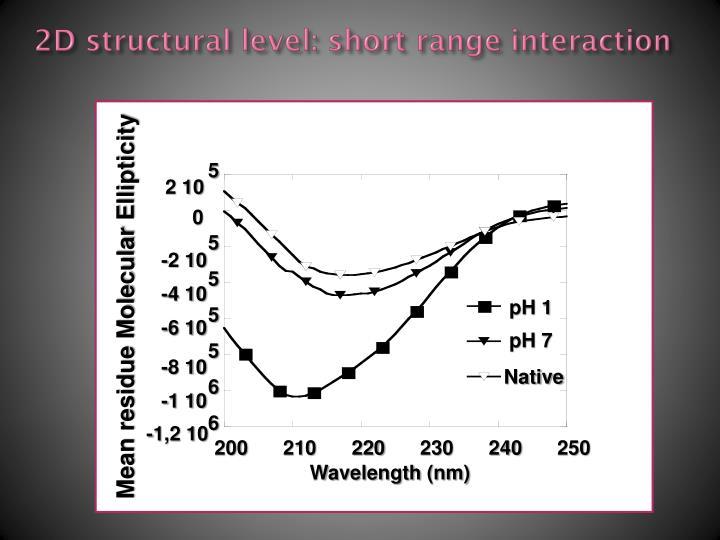 2D structural level: short range interaction
