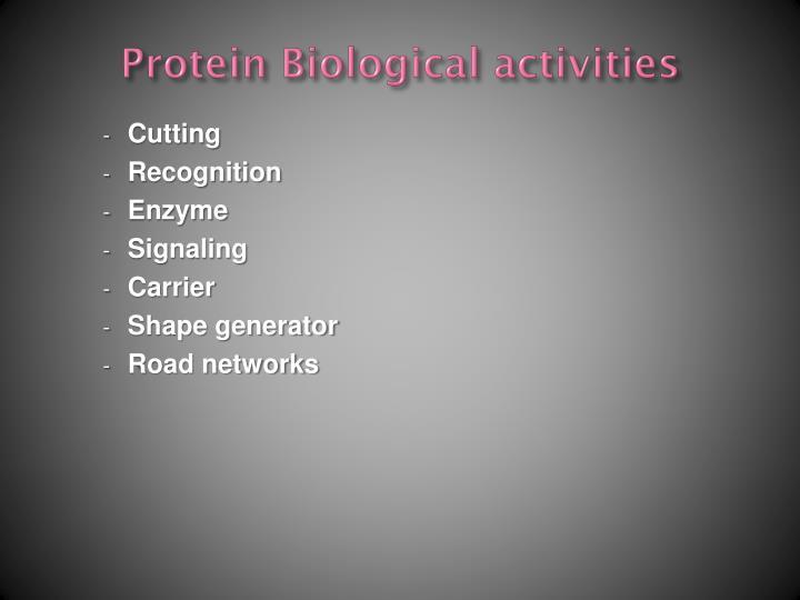 Protein Biological activities