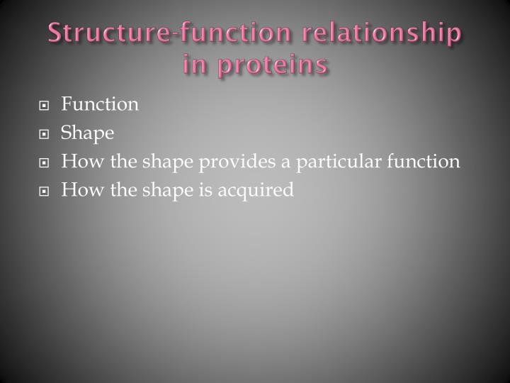 Structure-function relationship