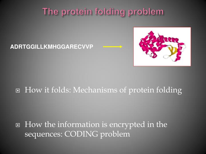 The protein folding problem